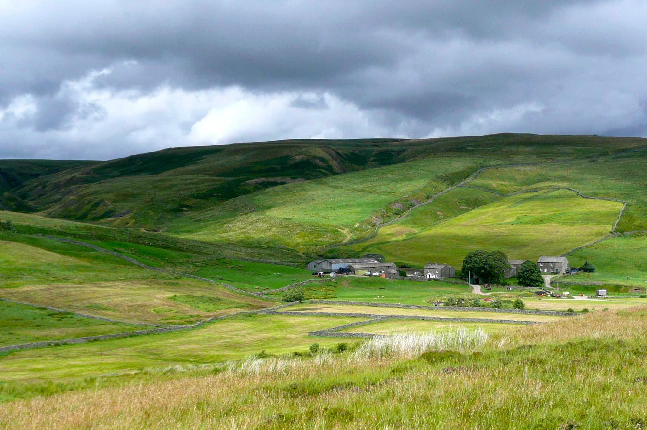 Ravenseat Farm; cream teas; a welcome site after the bogs of the Pennines